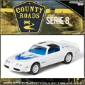 CR 8 - 1980 PONTIAC T/A Branco - Greenlight - 1/64